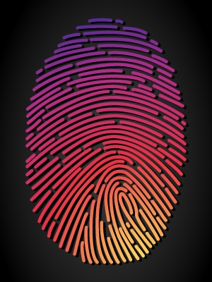 Projekt: Otisk prstu