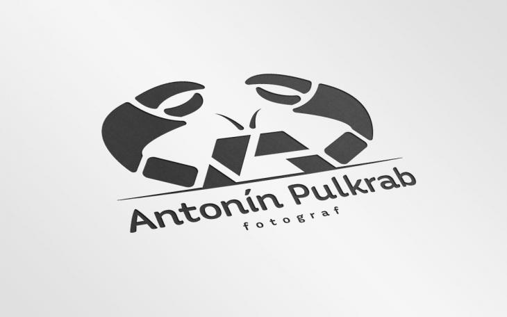 Projekt: Anotnín Pulkrab