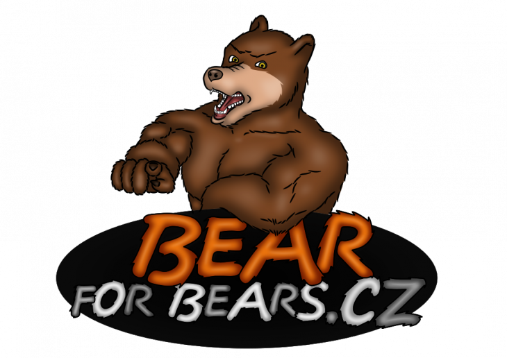 Projekt: Bear for Bears