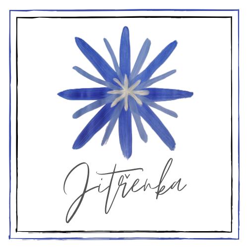 Projekt: Komunitní škola Jitřenka