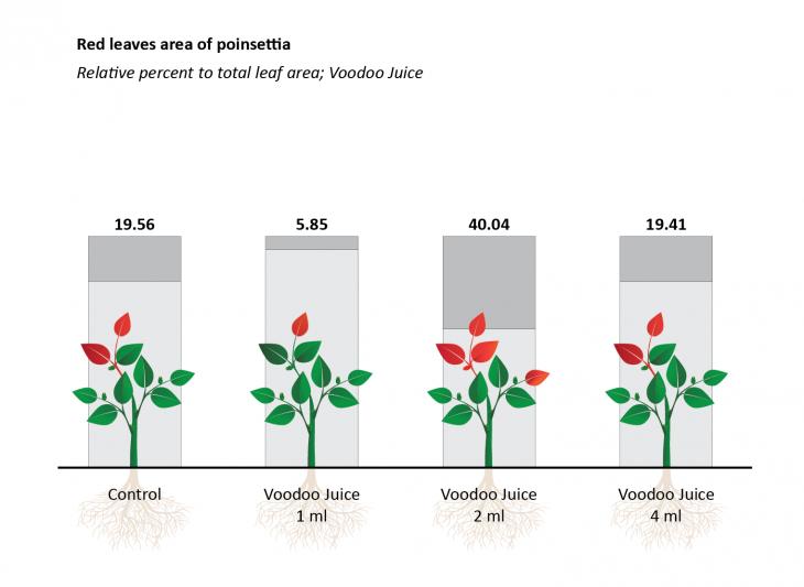 Projekt: Vliv mikroorganismů na rostliny
