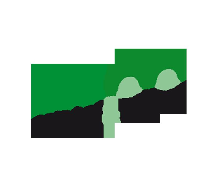 Projekt: Eco clean&shine